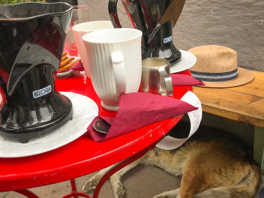 Coffee, with sleeping dog / Lesbos Island, Greece / Karen McCann / EnjoyLivingAbroad.com