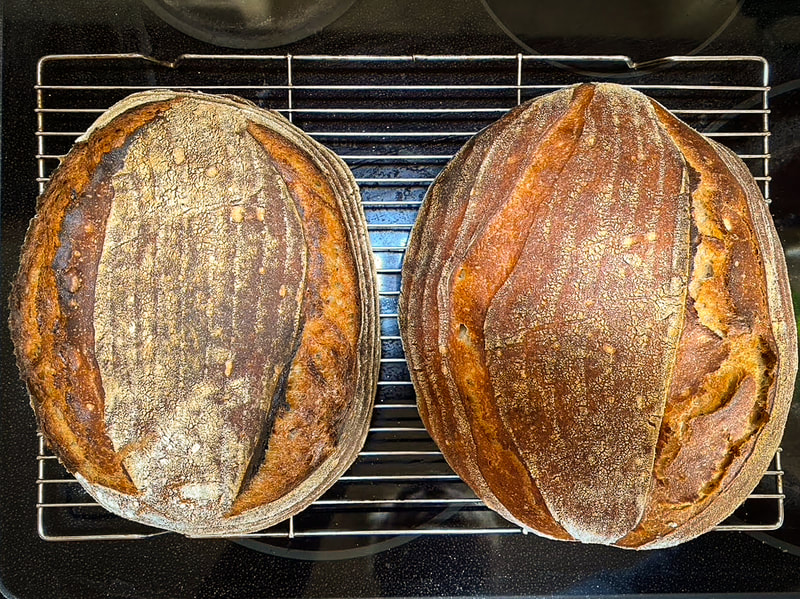 Phil's Amazing Sourdough Recipe /  Surviving the Pandemic / Keep Going! / Karen McCann / EnjoyLivingAbroad.com